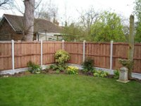 Garden fence with concrete posts and gravel boards, and wooden fencing panels.