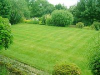 A well mown lawn.